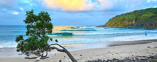 Tea Tree Sunset Surf by Adam Gormley