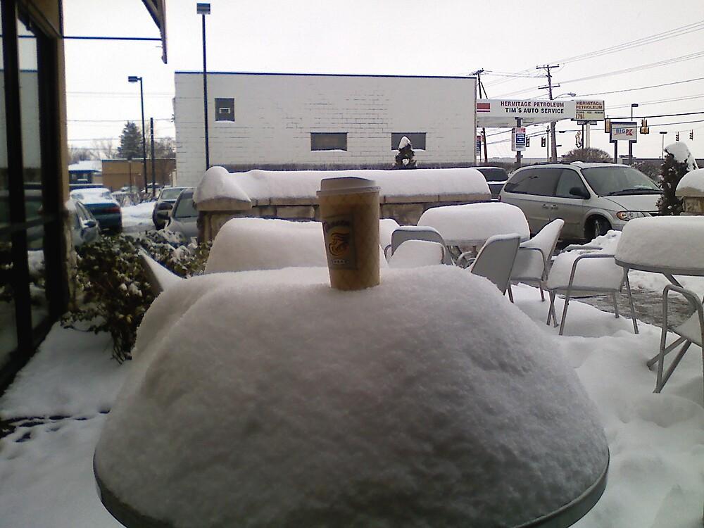 Snowstorm by mtda