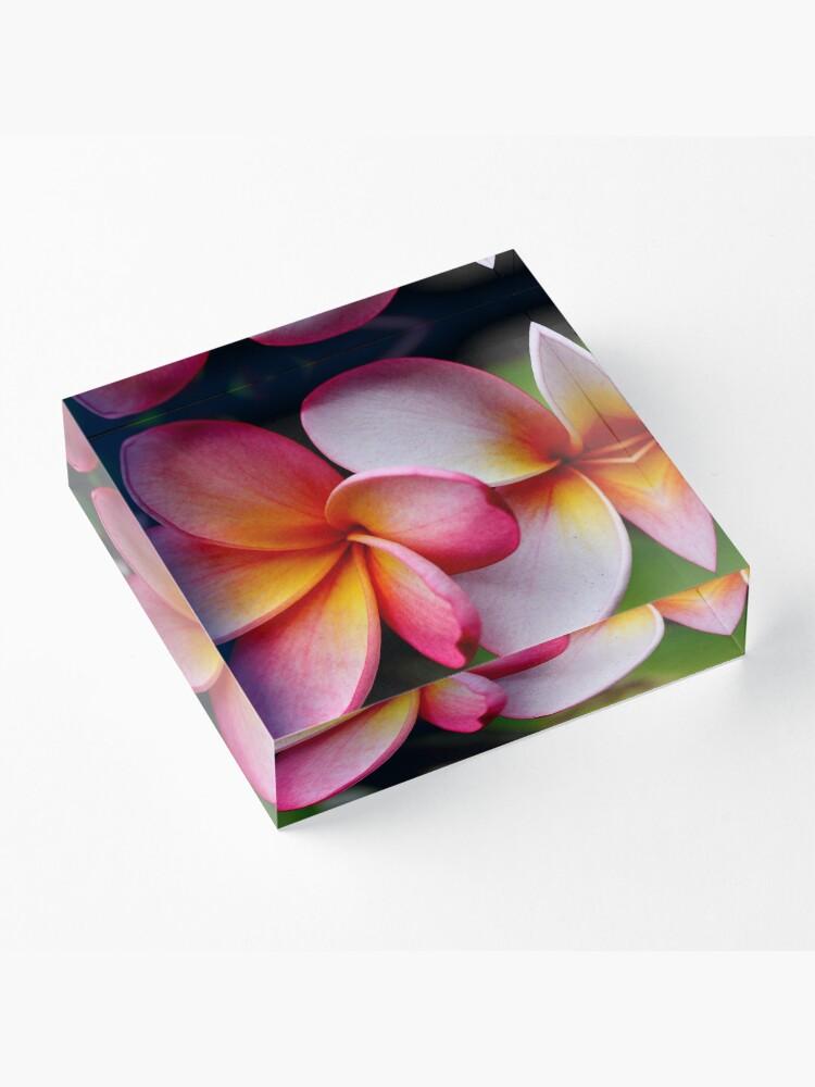 Alternative Ansicht von Schattierungen von Pink Acrylblock