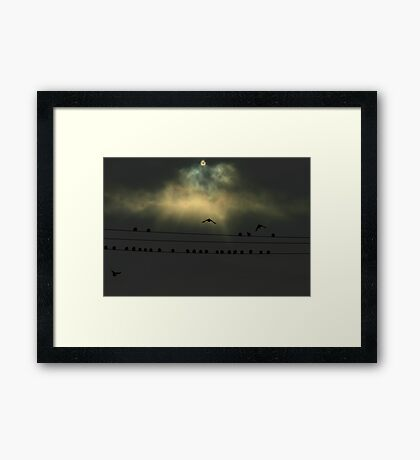 Soaring Above Framed Print