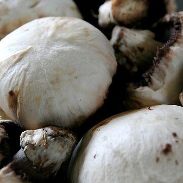 :::mushrooms::: by GetSanctified