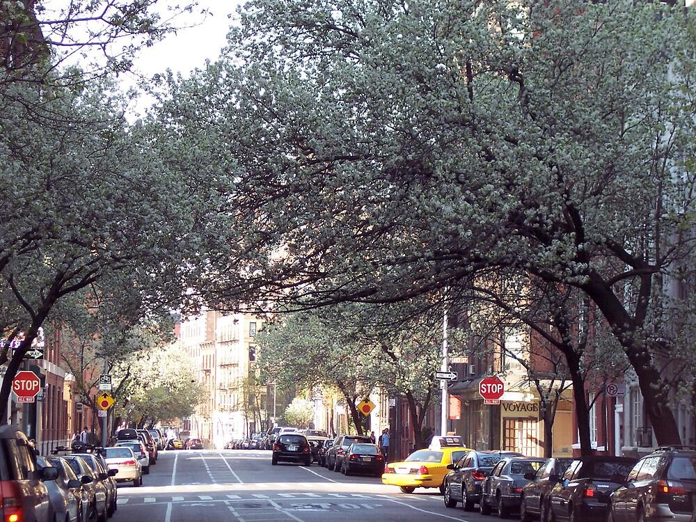 Greenwich & Perry St. (NYC) by gilbertramirez