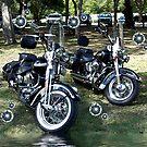 Pair of Harley's by Glenna Walker