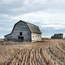 Alberta Farm by Brian R. Ewing
