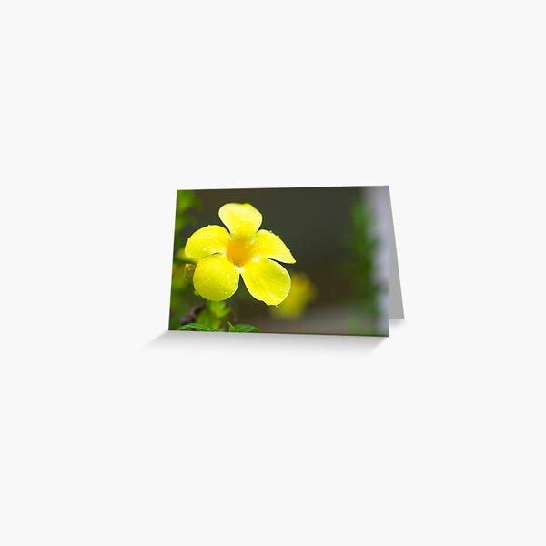 Yellow flower Greeting Card