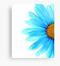 Color Me Blue Canvas Print