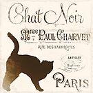 Chat Noir Vintage Paris Sign by mindydidit