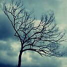 Urban Solitude by lilybellspics