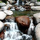 Small Waterfall Flowing Over Rocks and Stones by PrecisionFX