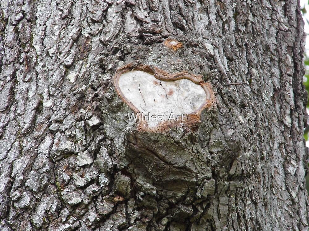 I HEART You Tree by WildestArt