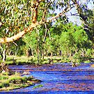 todd river 2 it flows by Christopher Birtwistle-Smith