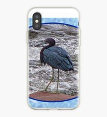 Little Blue Heron at the River iPhone Case