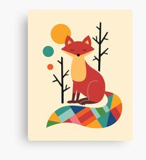 Rainbow Fox Canvas Print