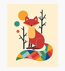 Rainbow Fox Photographic Print