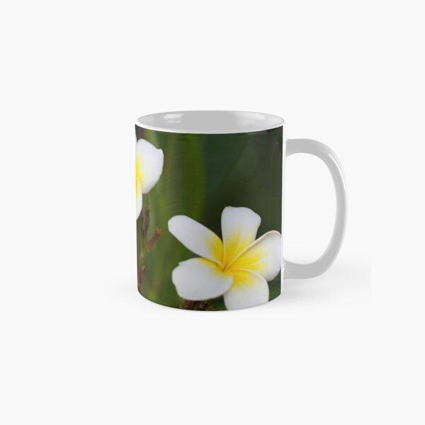 Frangipani leelawadee flowers Classic Mug