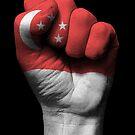 Flagge von Singapur auf einer angehobenen geballten Faust von jeff bartels