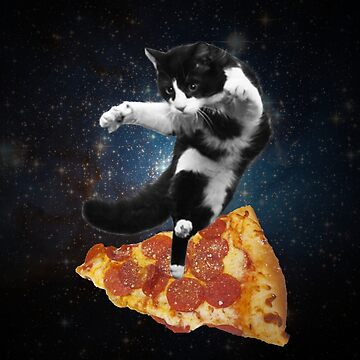 cat on pizza by MadeleineKyger