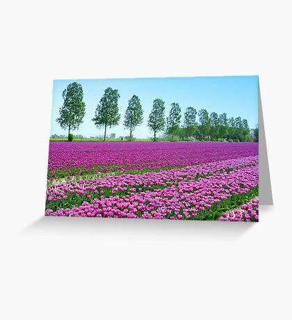 Purple Tulipfield Greeting Card