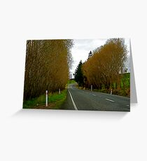 New Zealand country road Greeting Card