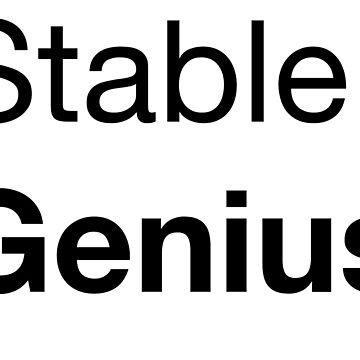 Stabiles Genie von eadingtonanne