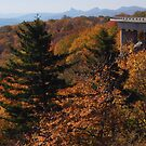 View from Blue Ridge Parkway near Linn Cove Viaduct by Jane Best