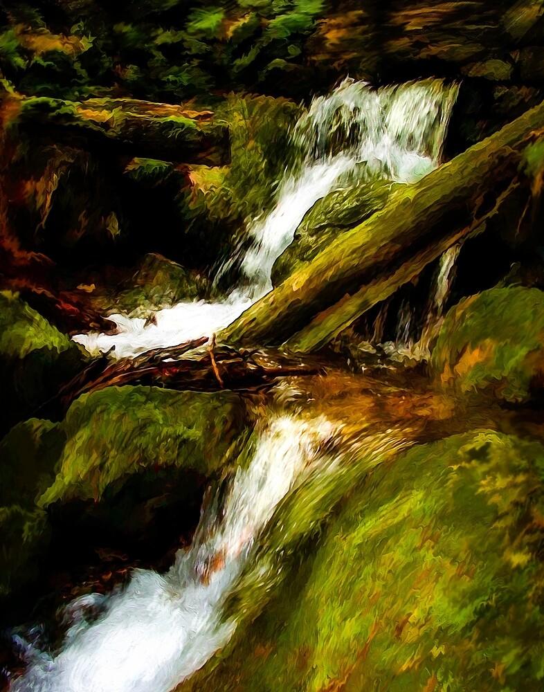 Forest Stream by Wib Dawson