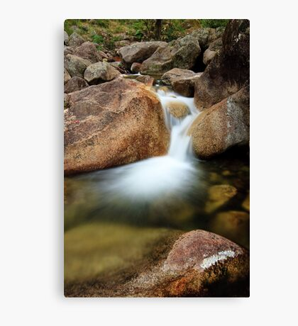 Emanating Canvas Print