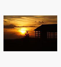 Sunset & Wood Photographic Print
