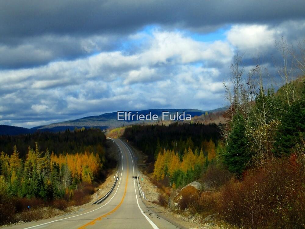 The Drive ! by Elfriede Fulda