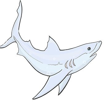 Adorable Cute Thresher Shark Swimming through Bubbles Decal by Inklingsofgrace
