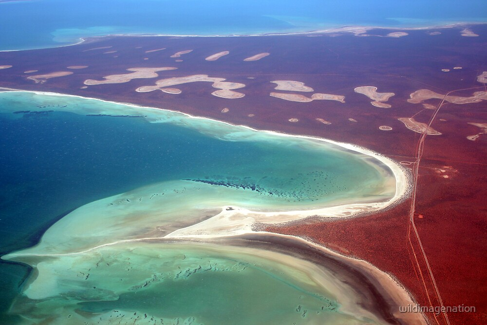 Quot Quot Shell Beach Quot Shark Bay Western Australia Quot By