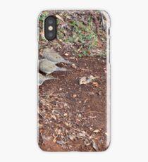 Mourning Doves iPhone Case/Skin