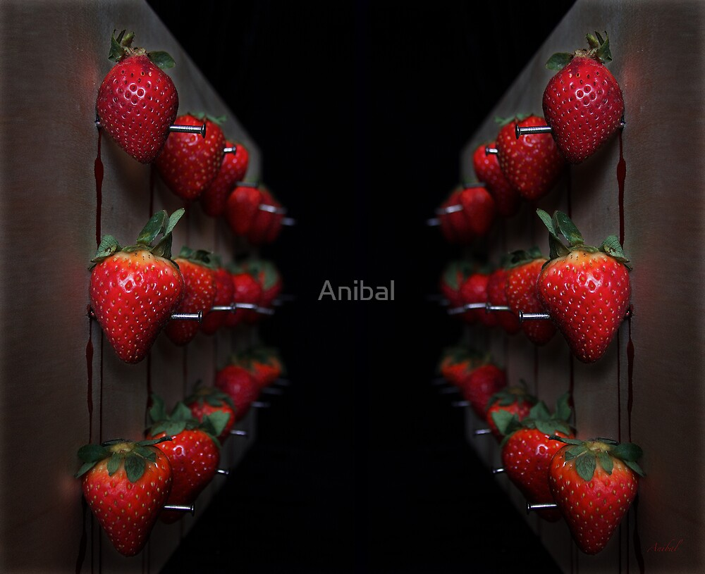 Strawberry Fields Forever by Anibal