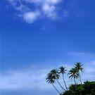 palm paradise by gabryshak