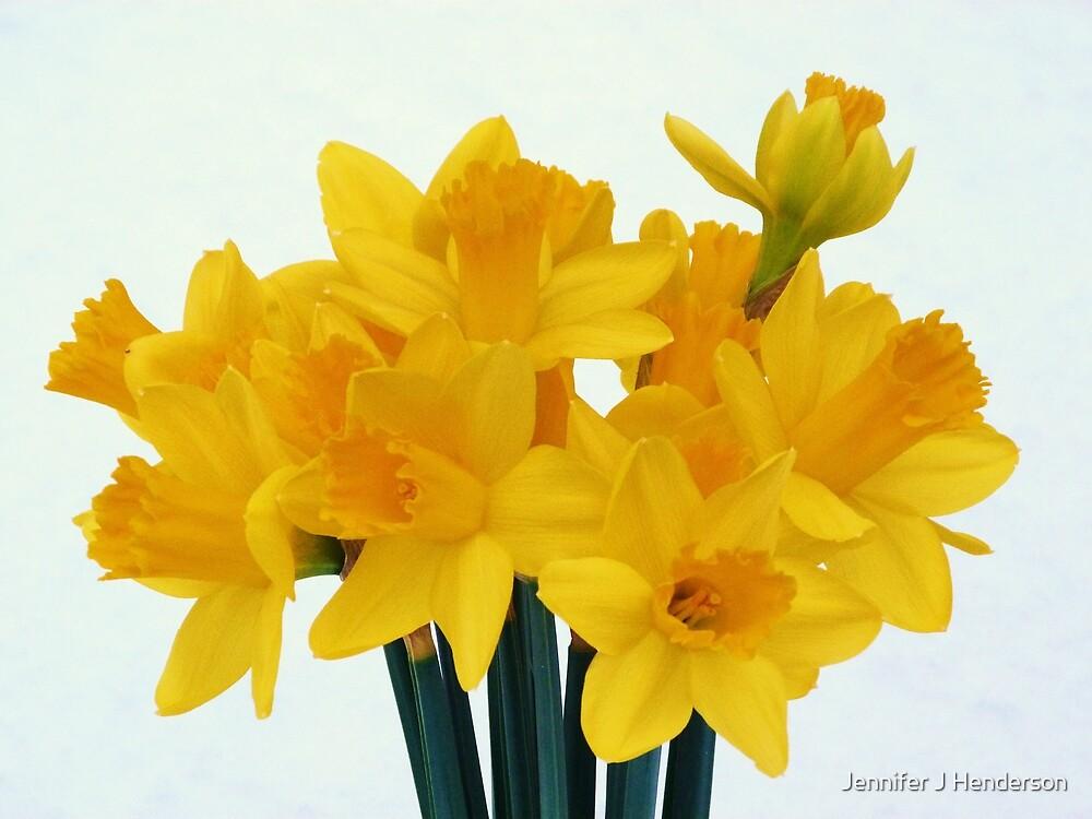 Easter Sunshine by Jennifer J Watson