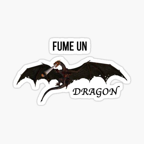 Vald Xeu Fume un dragon Sticker