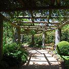 Secret Garden by Catherine Davis