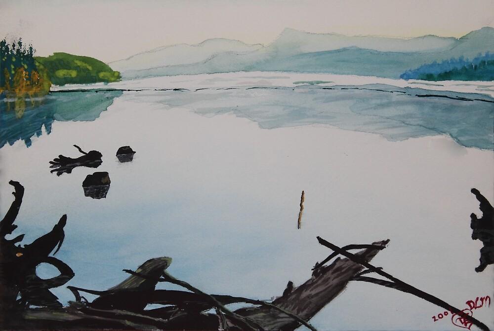Oakridge Reservoir #1 by Dawna Morton