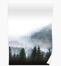 Minimalistischer Wald Fotoabzug Poster