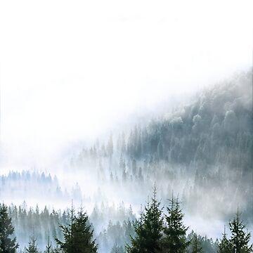 Minimalistic Forest Photograph Print by Fangpunk