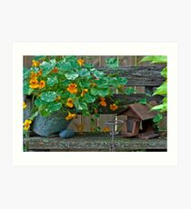 Nasturtiums In The Breeze Art Print