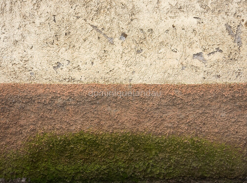 natural abstract by dominiquelandau