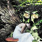 Weeping Faerie by David Knight