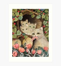 Cats in the wood piles Art Print