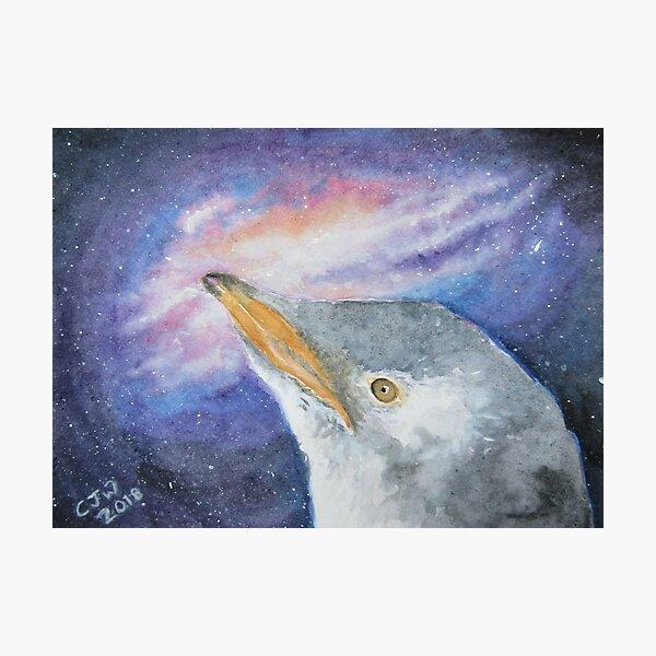 Penguin Chick Cosmic Milky Way Art Gift Photographic Print