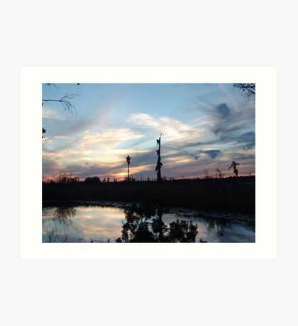 Bird Clouds at Sunset Art Print