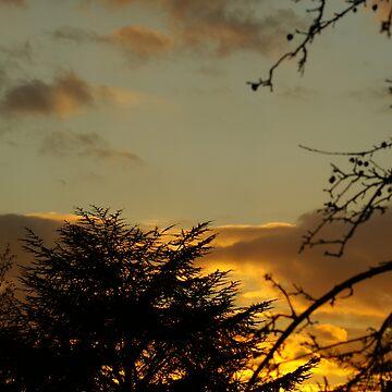 Green Sky by Gilberte