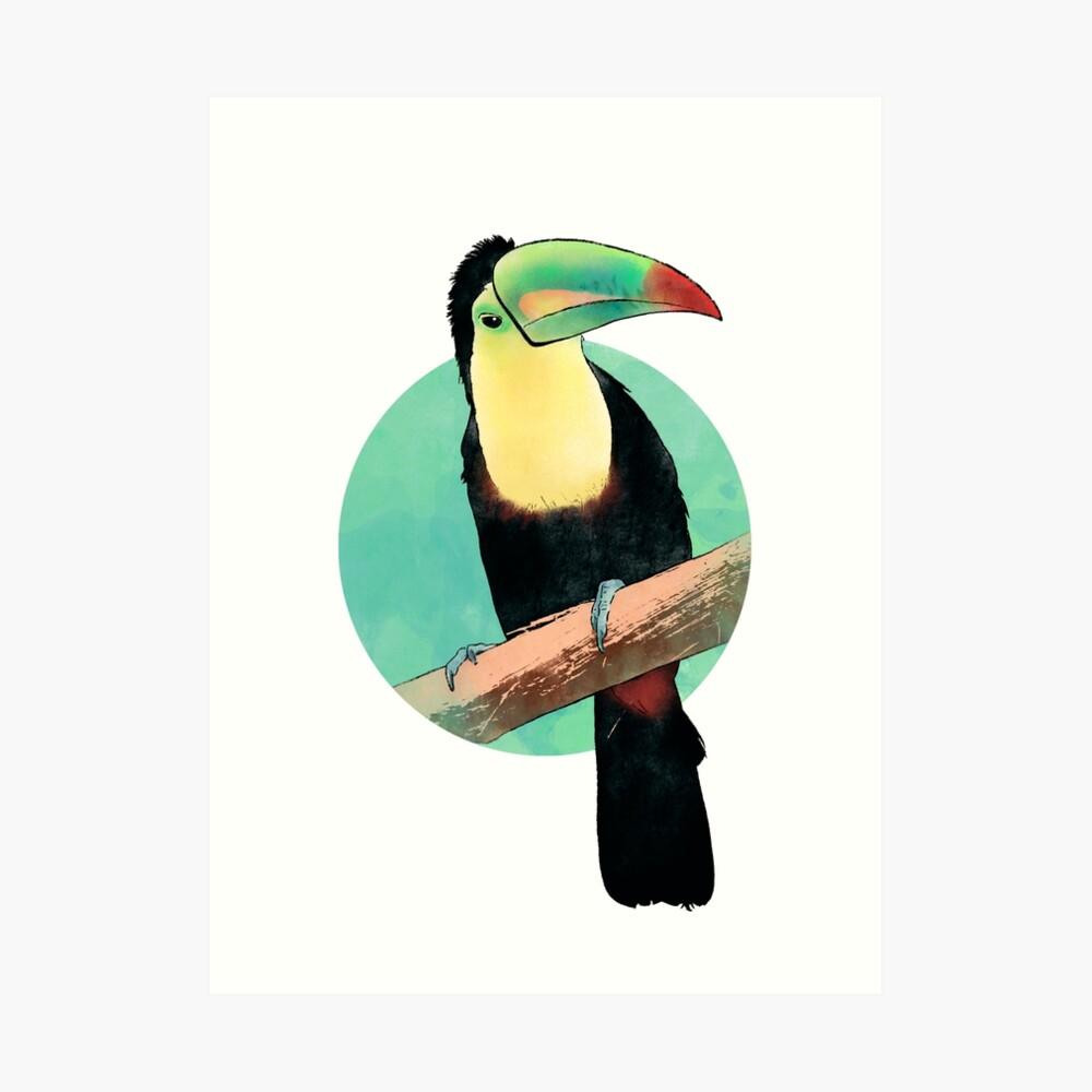 Pico iris Lámina artística
