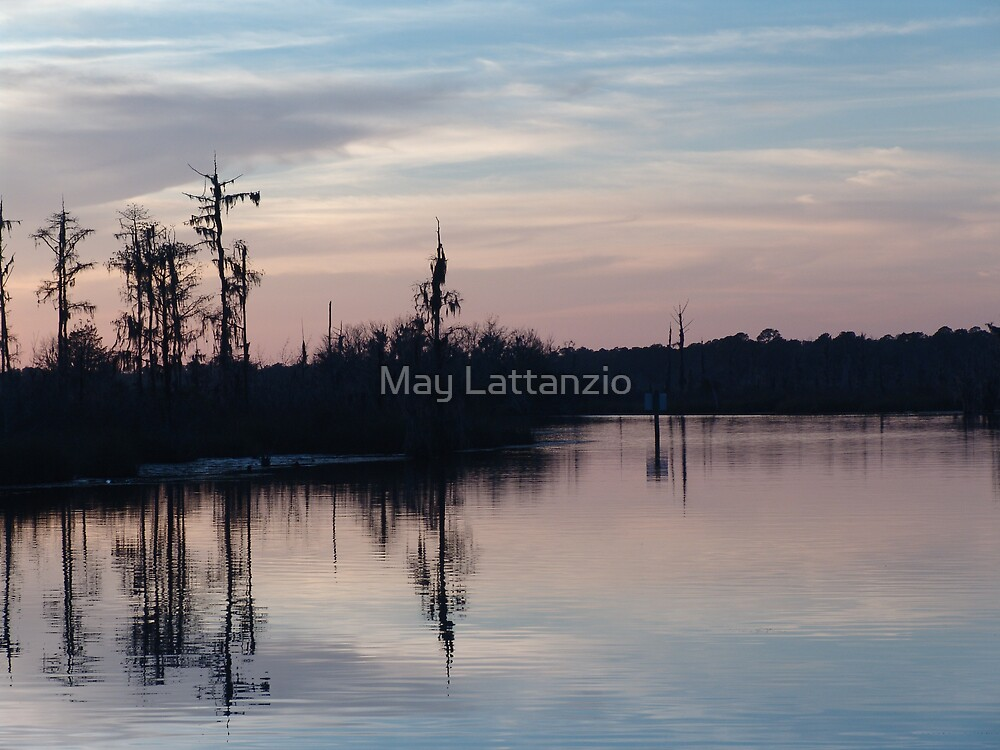 Sunset on Bear Creek  by May Lattanzio