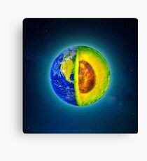 From An Avo Planet Canvas Print